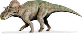 avaceratops.png