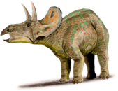 nedoceratops